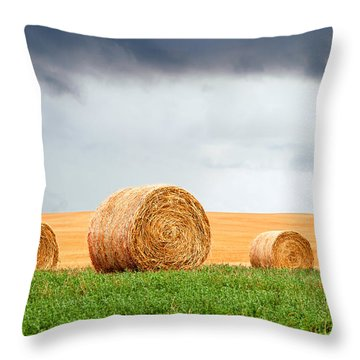 Bales And Layers Throw Pillow