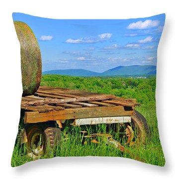 Bales At Rest Throw Pillow