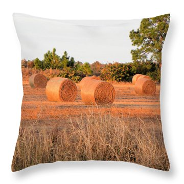 Throw Pillow featuring the photograph Bales by Rosalie Scanlon