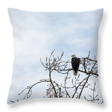 Throw Pillow featuring the photograph Balk Eagle by Rebecca Cozart