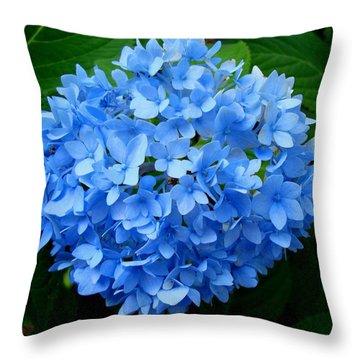 Ball Of Blue Throw Pillow by Michiale Schneider