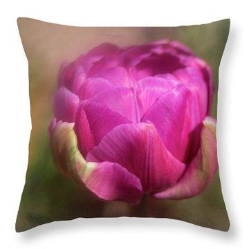 Ball Of Colour Throw Pillow