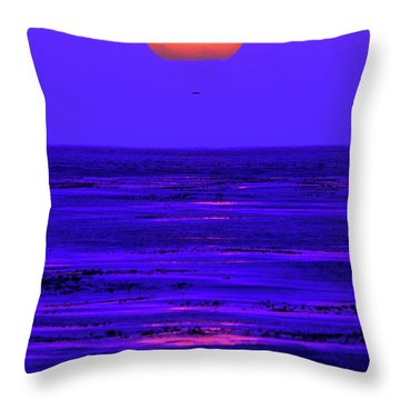 Throw Pillow featuring the photograph Ball Of Fire by Howard Bagley