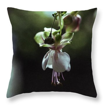 Throw Pillow featuring the photograph Ballerina Flower by Paula Porterfield-Izzo