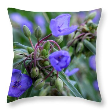 Balmy Blue Throw Pillow by Michiale Schneider