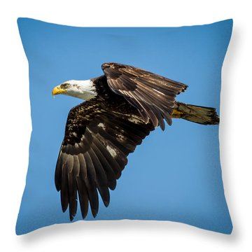 Bals Eagle Proudly Soaring Throw Pillow