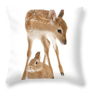 Bambi And Thumper Throw Pillow
