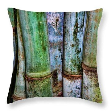 Bamboo 2 Throw Pillow