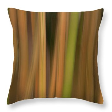 Bamboo Abstract Throw Pillow by Carolyn Dalessandro