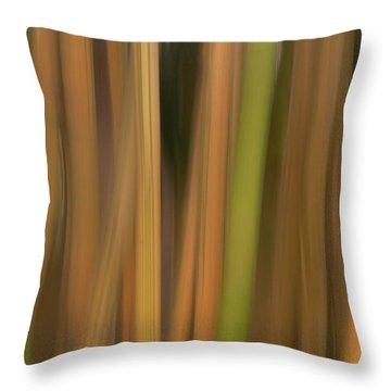 Bamboo Abstract Throw Pillow