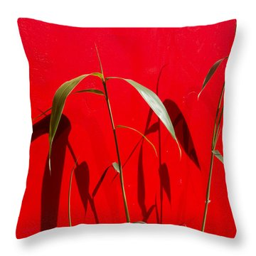 Bamboo Against Red Wall Throw Pillow