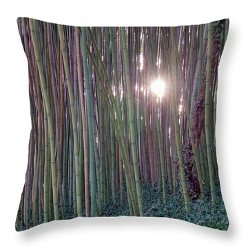 Bamboo And Ivy Throw Pillow