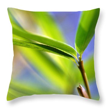 Bamboo Throw Pillow by Catherine Lau
