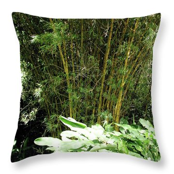 F8 Bamboo Throw Pillow by Donald k Hall