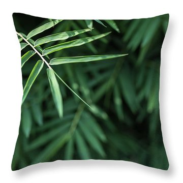 Bamboo Leaves Background Throw Pillow