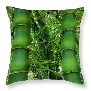 Bamboo Throw Pillow by Loriannah Hespe