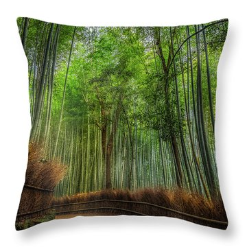 Throw Pillow featuring the photograph Bamboo Path by Rikk Flohr