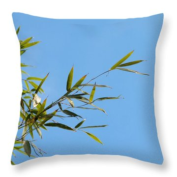 Bambous Au Ciel Throw Pillow