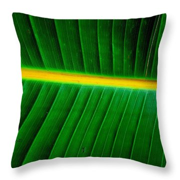 Banana Plant Leaf Throw Pillow