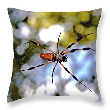 Banana Spider   1 Throw Pillow