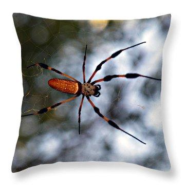 Banana Spider   3 Throw Pillow
