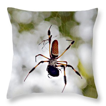 Banana Spider Lunch Time 2 Throw Pillow