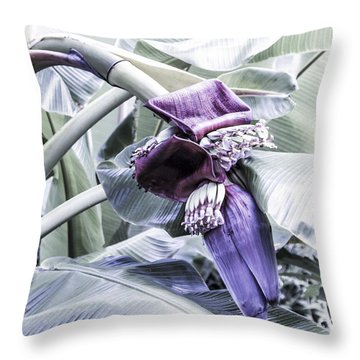 Throw Pillow featuring the photograph Banana Beginnings In Cool Shades by Kerri Ligatich
