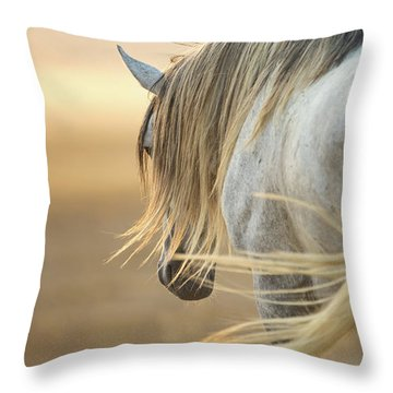 Band Stallion Sunrise Throw Pillow