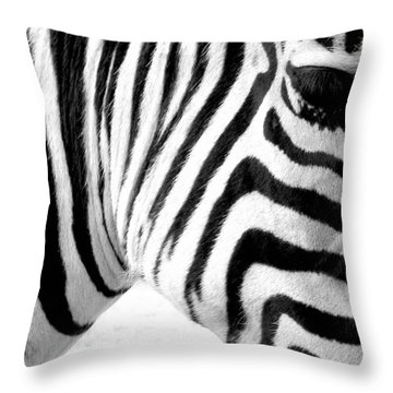 Banding Throw Pillow by Andrew Paranavitana
