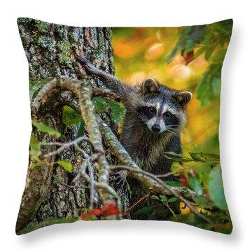 Bandit #1 Throw Pillow