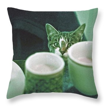 Throw Pillow featuring the photograph Bandit by Laurie Stewart