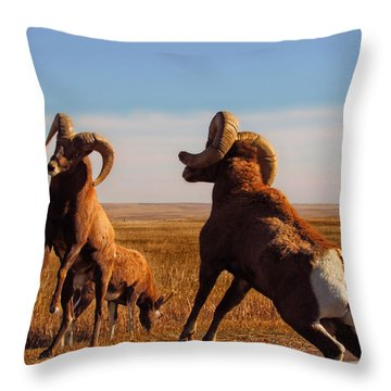 Bang Of The Bighorn Throw Pillow