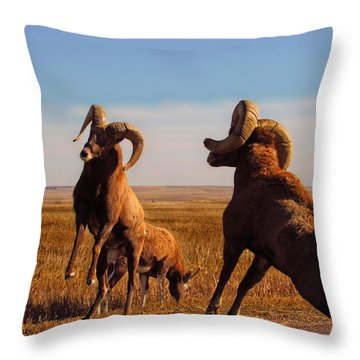Bang Of The Bighorn Throw Pillow