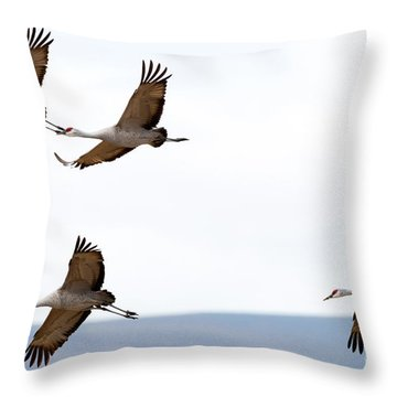 Bank Right Throw Pillow