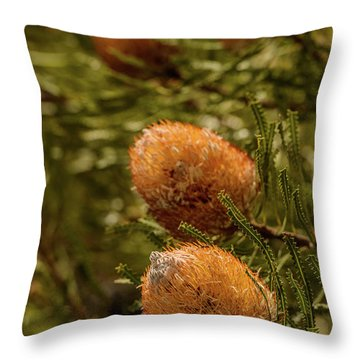 Throw Pillow featuring the photograph Banksia by Werner Padarin