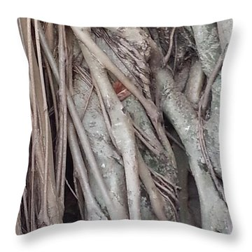 Banyan In Maui Throw Pillow