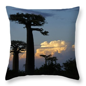 Baobabs And Storm Clouds Throw Pillow