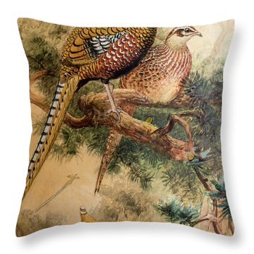 Bar-tailed Pheasant Throw Pillow by Joseph Wolf