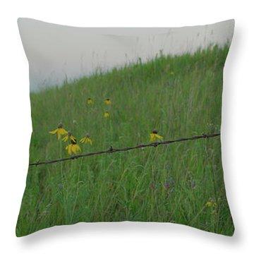 Barb Wire Prairie Throw Pillow