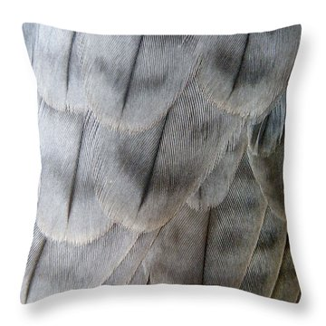 Barbary Falcon Feathers Throw Pillow