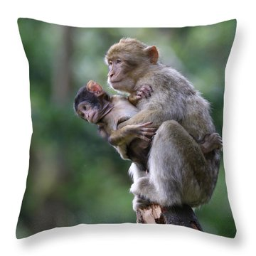 Barbary Macaque Mother And Baby Throw Pillow
