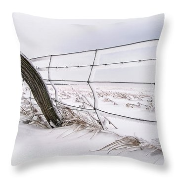 Barbed Wire And Hoar Frost Throw Pillow by Dan Jurak