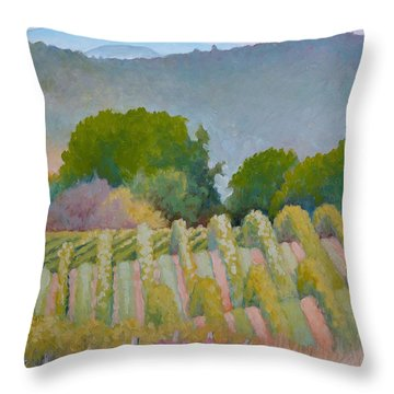 Barboursville Vineyards 1 Throw Pillow by Catherine Twomey