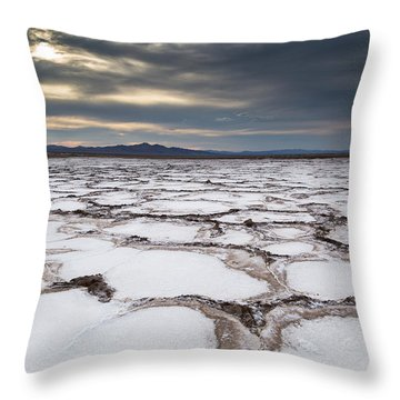 Bare And Boundless Throw Pillow