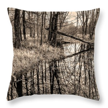 Throw Pillow featuring the photograph Bare Bones by Betsy Zimmerli