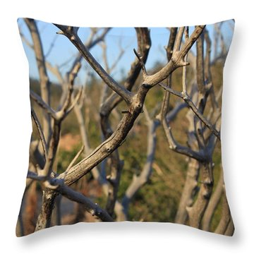Bare The Beauty Throw Pillow