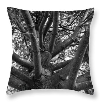 Bare Tree Throw Pillow