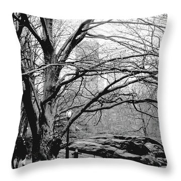 Bare Tree On Walking Path Bw Throw Pillow by Sandy Moulder