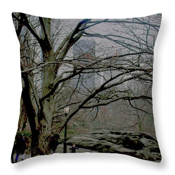 Bare Tree On Walking Path Throw Pillow by Sandy Moulder