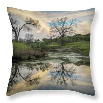 Bare Tree Reflections Throw Pillow